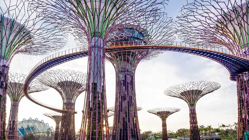 supertree grove garden by the bay singapore
