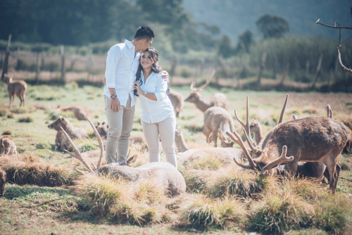 destinasi foto prewedding