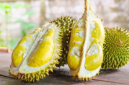 durian montong thailand